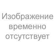 Радио БДУ  220 в с 2 пультами